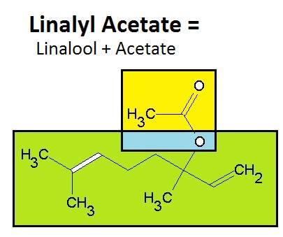 Linalyl Acetate = Linalool + Acetate