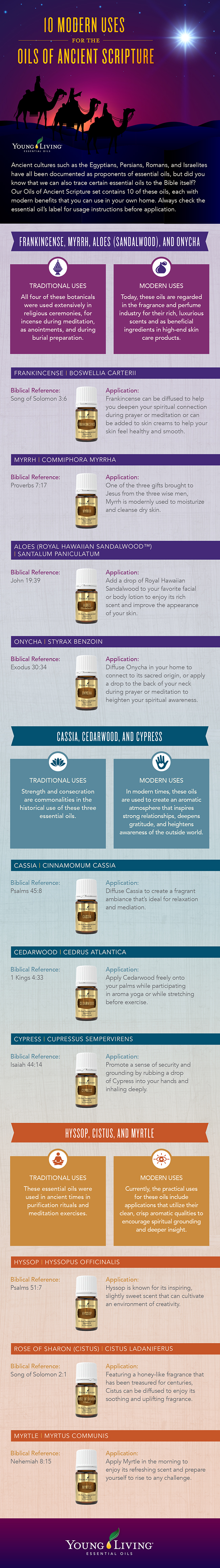 Oils of Ancient Scripture Infographic
