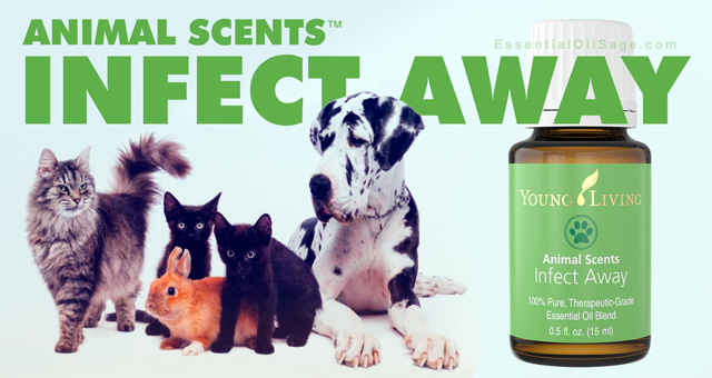Young Living Infect Away Oil
