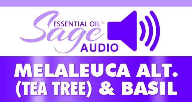 Audio: Basil & Melaleuca alt. (Tea Tree) Oil