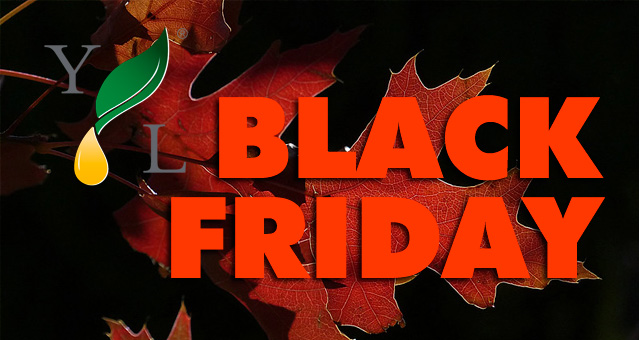 Young Living Black Friday Sale