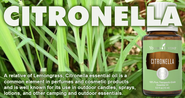 Young Living Citronella Oil