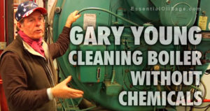 Cleaning Boiler without Chemicals