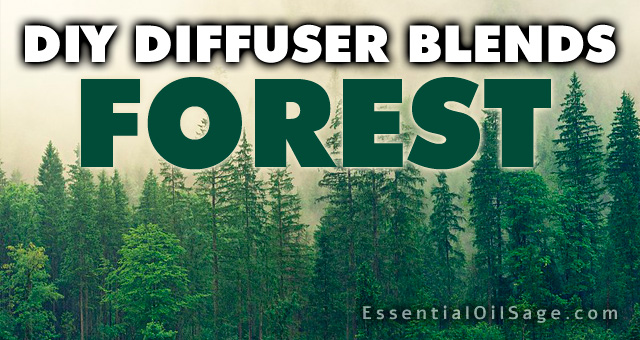 DIY Diffuser Blends - Forest