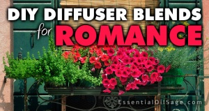 DIY Diffuser Blends for Romance