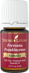 Frankincense Boswellia Frereana