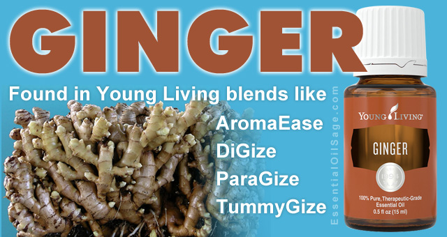 Young Living Ginger Oil