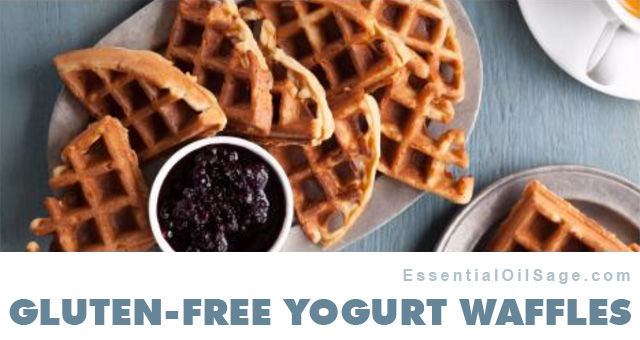 Gluten Free Yogurt Waffles