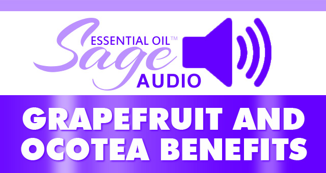 grapefruit ocotea mp3