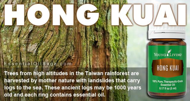 Young Living Hong Kuai Essential Oil