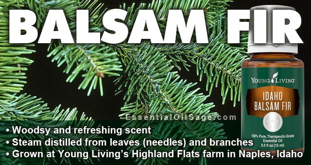 Young Living Idaho Balsam Fir Oil