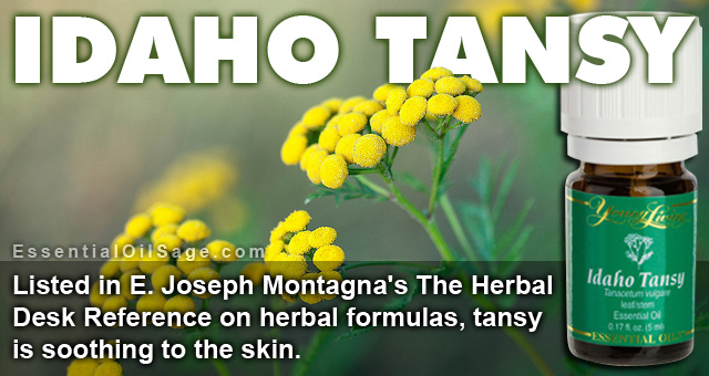 Young Living Idaho Tansy Essential Oil