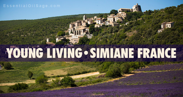 Young Living Lavender Farm and Castle in France