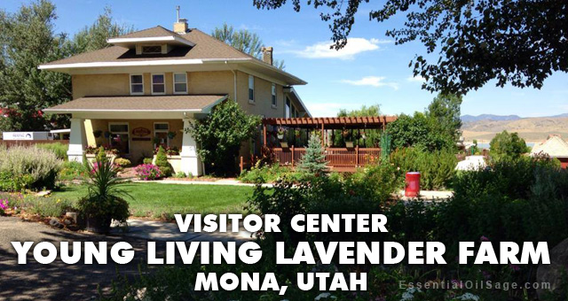 Visitor Center - Young Living Lavender Farm Mona Utah