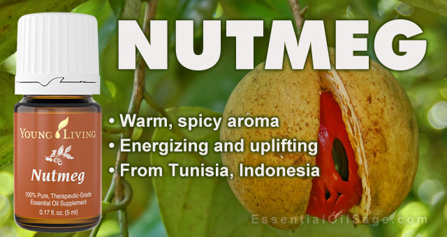 Young Living Nutmeg Essential Oil Buy Here