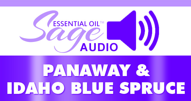 Audio: PanAnway and Idaho Blue Spruce