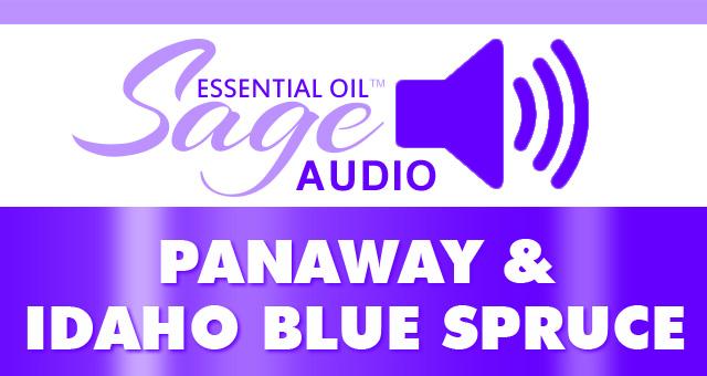 Audio: PanAnway and Idaho Blue Spruce