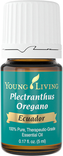 Plectranthus Oregano Oil