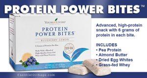 Protein Power Bites