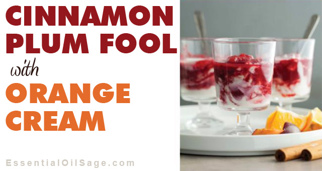 Cinnamon Plum Fool Recipe