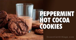Recipe: Peppermint Hot Cocoa Cookies