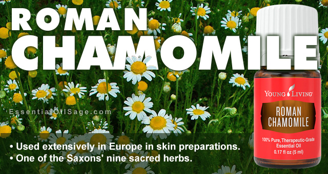 Young Living Roman Chamomile Oil