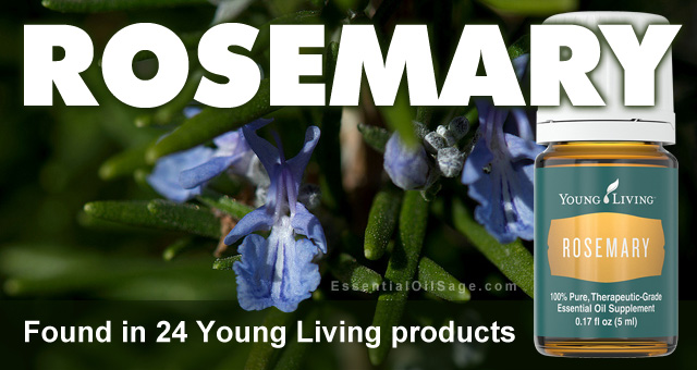 Young Living Rosemary Oil