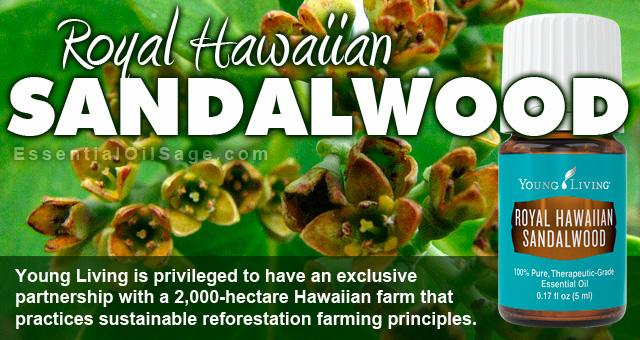 Young Living Royal Hawaiian Sandalwood Oil