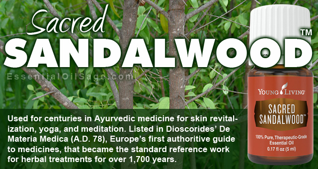 Sacred Sandalwood Essential Oil