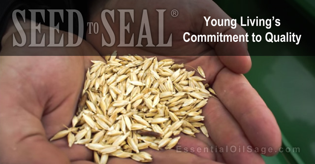 Seed to Seal Videos