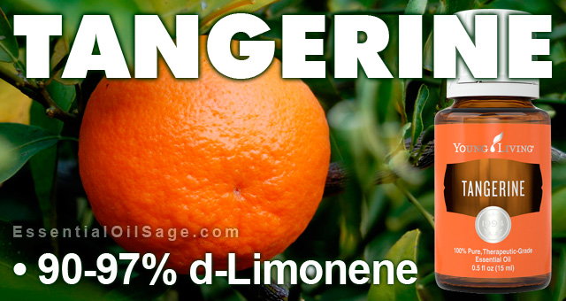 Young Living Tangerine Oil