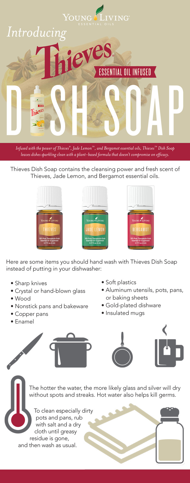 Thieves Dish Soap Infographic