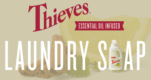 Thieves Laundry Soap Infographic