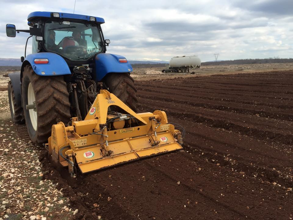 Soil prep at helichrysum farm in Croatia