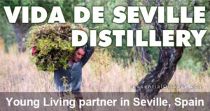 Vida de Seville Distillery: Young Living Partner in Seville, Spain