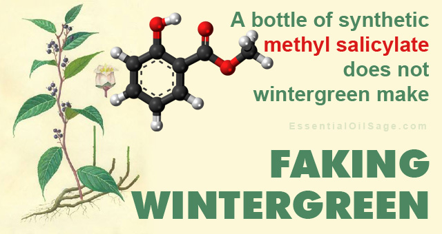 Chemistry of Wintergreen Oil