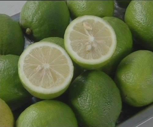 Thick Rind of Jade Lemon