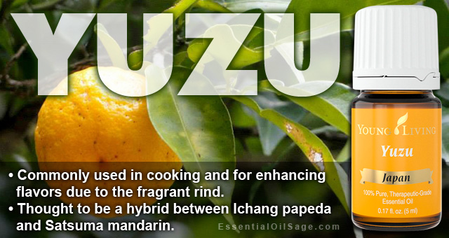 Young Living Yuzu Essential Oil